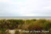 I Love the Coast! / Images of North and South Carolina beaches