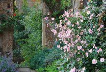 ♣puutarha♣ / Omg so beatiful gardens