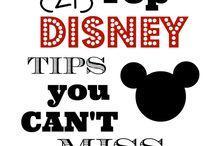 Disneyland / Disneyworld