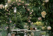 Beautiful Gardens / by Rachel Whitworth