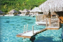 Water images / Swimming pools, rock pools, beaches, jungle pools, waterfalls, ponds...