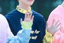 鍾辰樂 / NCT DREAM / Chenle / Zhong Chenle