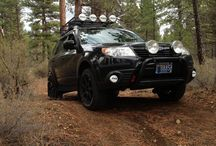 FORESTER PLANS