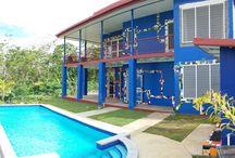 Frida Inspired House