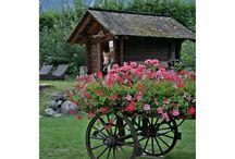 Switzerland / #SwissMade #GrandTour roadtrip around Switzerland / by Passionate About Baking