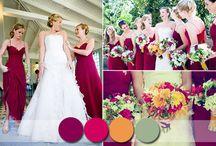 barvy svatby 2015