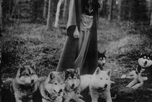 Old photos with animals