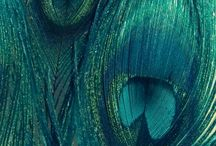 Peacock inspired / by Mary Burgess