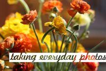 Photography - Everyday Photos