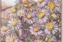 Bloemenkinderen
