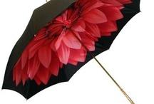 Şemsiyeler