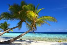 Beach Scenes / Idyllic sceneries around the world