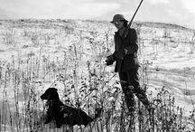 hunting / by Tamara Nichols-Mcdonald