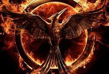 The Hunger Games / The Hunger Games
