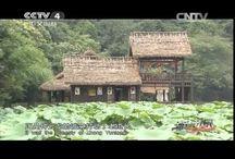 Wudang kungfu / http://youtu.be/YNF3imykgwU
