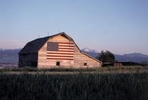 Flag sightings / by Terry Miller-Evans
