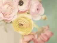 bloemen / by Eline Hop