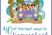Carschooling / We do a lot of carschooling--homeschooling on the road.  With audiobooks, podcasts, DVDs, this precious time can give way for a lot of additional learning.