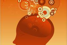 The Brain & Memory