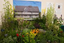 Silver Gilt for the Herb Society at RHS Tatton 2014 / In the Summer of 2014, Herb Society members won a Silver Gilt medal for their stand at the RHS flower show at Tatton Park.