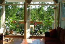 Balcony Garden / by Alexia Souza