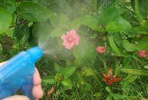 USO del bicarbonato en el Jardin