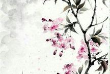 Rajz azsiai
