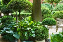 Havedesign / Landsbyhaver damme belægning på havegange og stauder