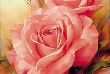 lys rosa rose