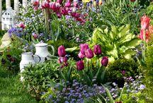 Raus in den Garten, der Frühling ist da!