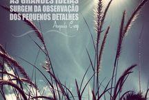 Pensamentos  / Reunião dos pensamentos que mais curto! / by Anninhah Barbosa