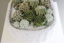 fondant kaktuszok.