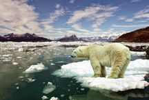 ClimateChange / We all have a mutual responsibility of protecting our planet.