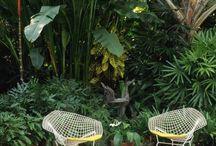 Jardin / Mobilier