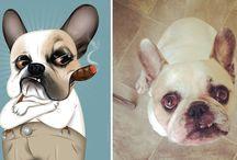 Bakmaya Doyamayacağınız 17 Eğlenceli Kedi-Köpek Portresi
