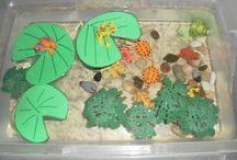Themes: Pond Life
