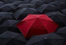 Rainy Days / by Sioux-san