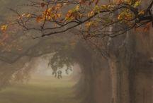 ...Podzim/Autumn...