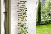 Home ideas : Outdoor Wall