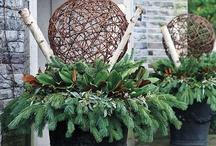 A Woodland Christmas / by Jill Marcott-McCall ~* Feathers & Flight*~