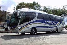 Vehicles - Bus
