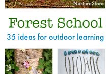 Forest Learning Things To Do / Teaching & learning resources for parents, primary teachers, early childhood educators, family daycares, & after hours school care providers, who want ideas on how to integrate bush school into their lives and curriculums.