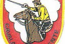 Batalhões de Cavalaria Guiné