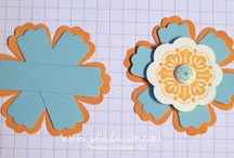 Paper crafts, Scrapbooking, card making / by Cynthia Walters