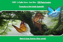 EL4DEV - Le Papillon Source Inner Africa (French) - Elvere DELSART