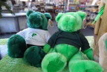 Everything Teddy Bears / Background info of characters, pix of Chelsea/Plymouth, teddy bears, etc.
