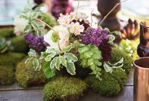 Weddings~Woodland Plum / For Parker Freazel and Rachel Criscoe