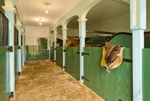 Equestrian stuff (nothing that you would understand) / by Sarah Walker