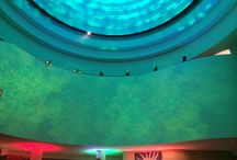 2014 - 10th Anniversary of the National Museum of the American Indian / EQ provided audio, lighting and video services for the 10th Anniversary of the National Museum of the American Indian.