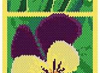 Levedula - lavender / levendula minden mennyiségben és formában